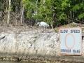 Everglades-SharkValley00003.jpg