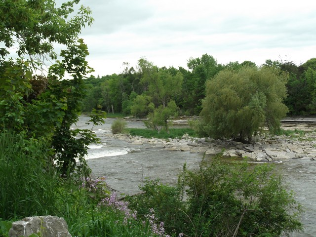 Campbellford00032