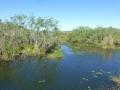 Everglades_100011.jpg