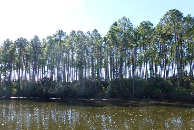 Apalachicola00058