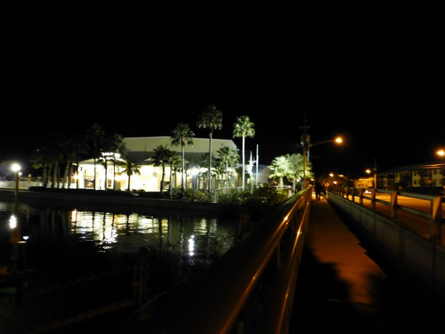Dunedin00008