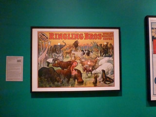 SarasotaRinglingMuseums00033