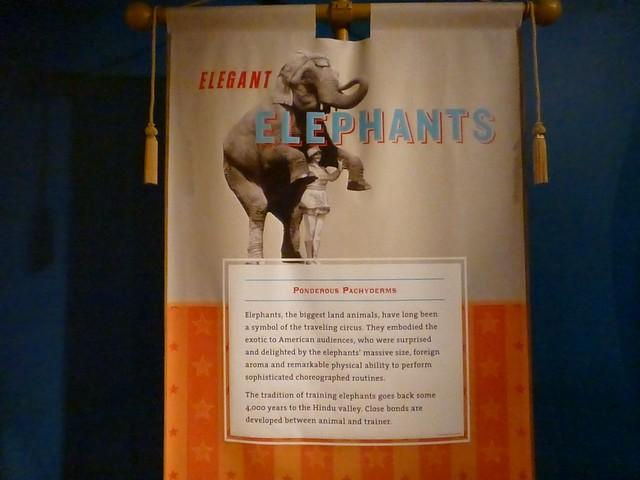 SarasotaRinglingMuseums00038