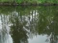 Erie-Canal3al00109