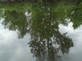 Erie-Canal3al00110