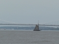 GW_Bridge_Sloop_Clearwater_050714