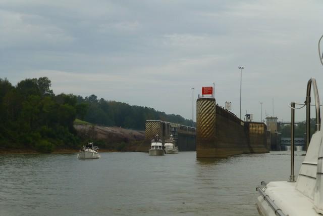 Tensaw_River0000010