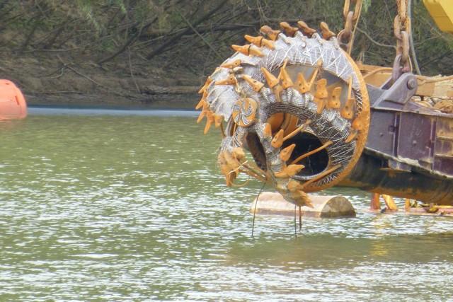 Tensaw_River0000028