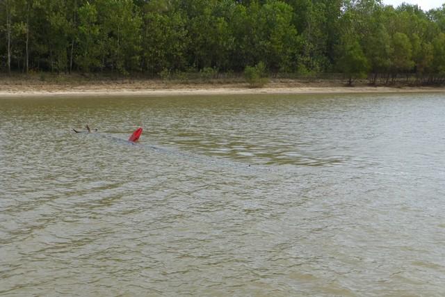 Tensaw_River0000031