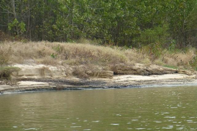 Tensaw_River0000040