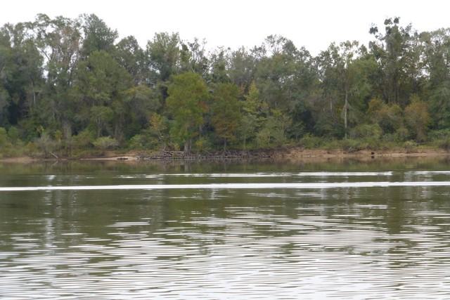 Tensaw_River0000055