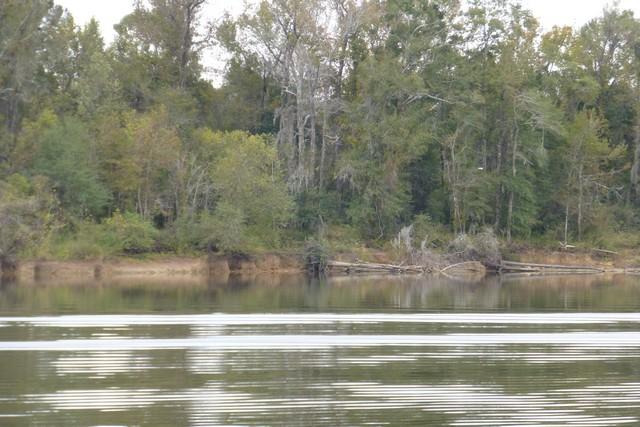 Tensaw_River0000056