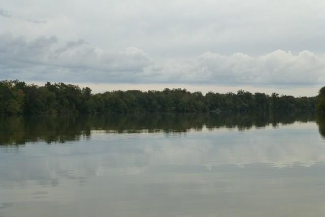 Tensaw_River0000058