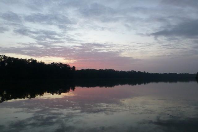 Tensaw_River0000060