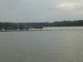 Tensaw_River0000008