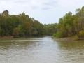 Tensaw_River0000035