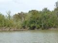 Tensaw_River0000038