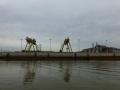 Tensaw_River0000041